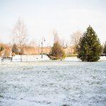 Park Dzikowski zimą, fotograf Tarnobrzeg